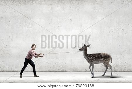 Young man in casual holding deer on lead