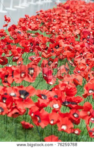Handmade Poppies at the Imperial War museum, as a tribute to the dead in the great war.
