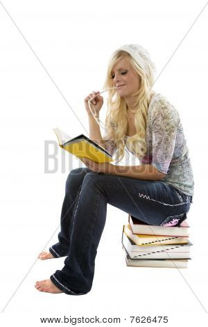 Girl On Stack Of Books Reading.