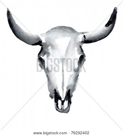 watercolor cow skull, vector illustration