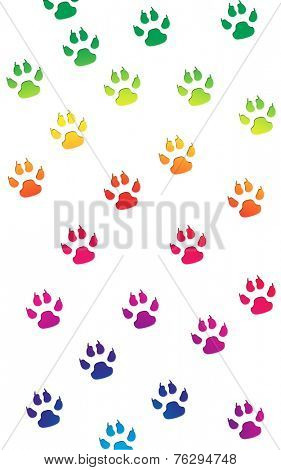 Paw prints in a random pattern in bright rainbow colors