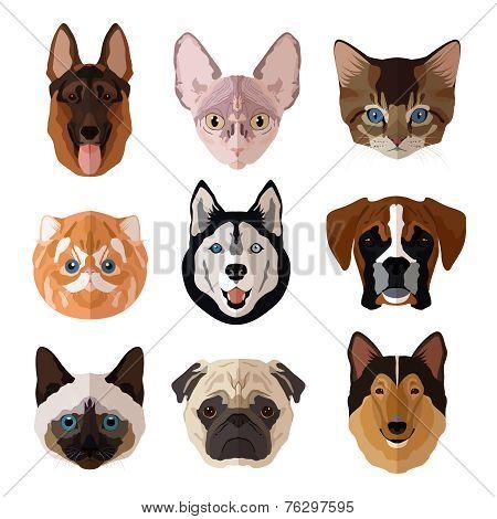 Pets portrait flat icon set