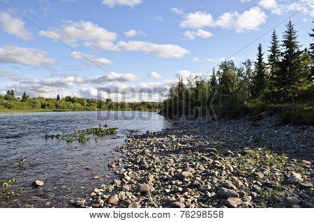 The Polar Urals. Pebble River Banks.