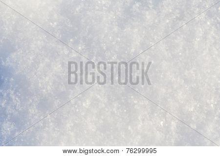 Pure Snow Texture