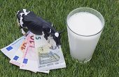 image of cash cow  - Image shows some banknotes on gras with mild and a cow - JPG