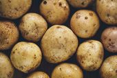 pic of solanum tuberosum  - Fresh potato tubers closeup - JPG