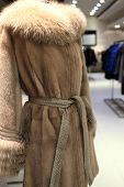 stock photo of mink  - The brown mink coat in the shop - JPG