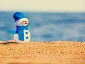picture of snowman  - Snowman on sand near sea - JPG