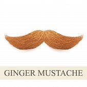 stock photo of rogue  - Realistic Vintage ginger curly mustache - JPG