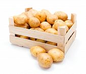 foto of solanum tuberosum  - Fresh white potatoes crop in wooden crate - JPG