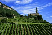 picture of south tyrol  - South Tyrol - JPG