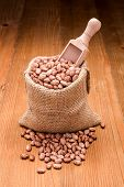 picture of phaseolus  - Loose dry pinto beans in burlap sack on wooden board background - JPG
