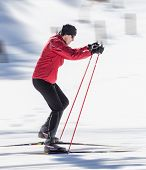picture of nordic skiing  - cross country skiing - JPG