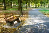 stock photo of banquette  - Wooden bench in the autumn park - JPG