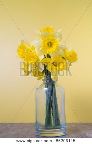 Daffodils In A Bottle On A Yellow Background