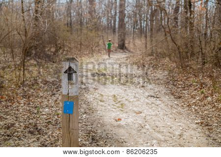 Young Boy Walks Away From The Camera On A Hiking Path In Winter