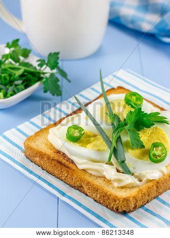 Breakfast Sandwich With Eggs, Parsly, Green Onion And Green Chili Pepper