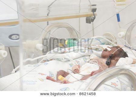 Bebê recém-nascido dentro de incubadora