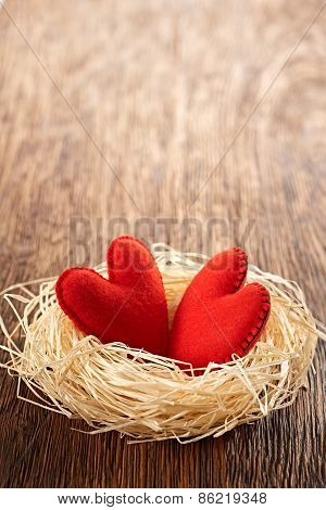 Valentines Day. Handmade Hearts Couple In Nest. Love Concept