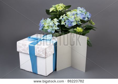 Blank Gift Card, Bouquet Of Hydrangea Flowers And Gift Box Over Grey
