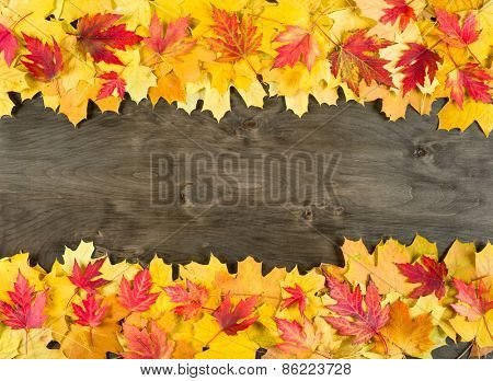 yellow autumn leaves frame on wood background