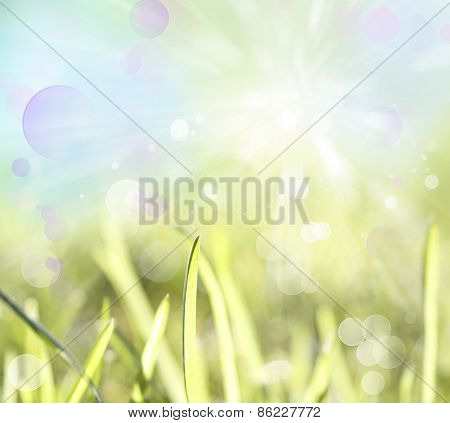 Blades of grass and abstract background