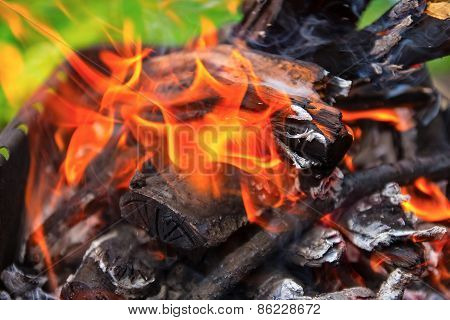 Wooden Pyre In Nature