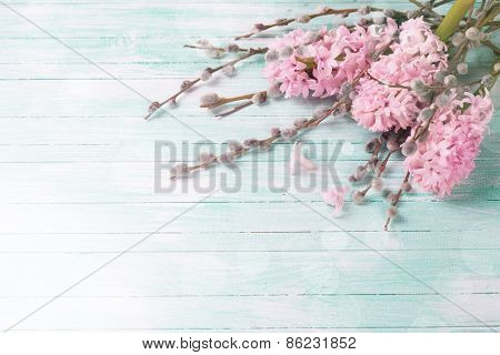 Postcard With Hyacinths And Willow Flowers