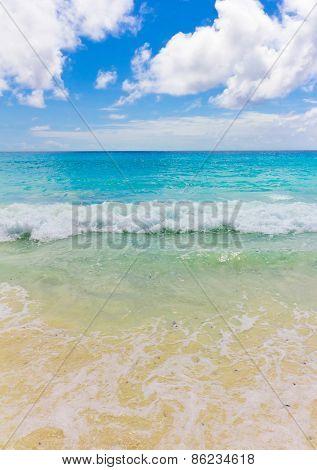 Scene Waters Surf