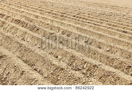 Furrows Abstract