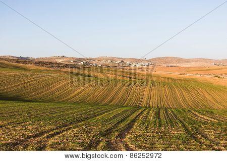 The Field Landscape