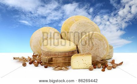 various forms cheese hazelnuts, walnuts, dried fruit, background sky