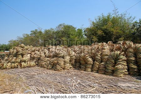 Vietnamese Rattan Bamboo Handicraft Manufactory At Cu Chi, Vietnam. They Produce Product Like Basket