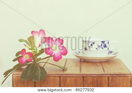 Coffe Cup And Desert Rose