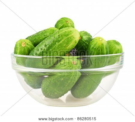 Fresh cucumbers in a glass bowl