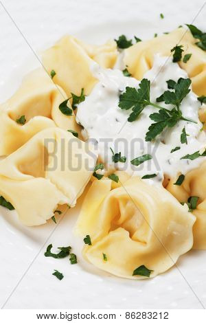 Italian tortellini pasta with cheese sauce and parsley