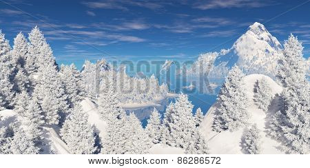 Snowcovered Trees On The Hills.