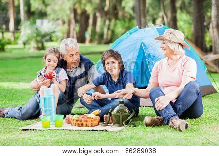 Happy multi generation family camping in park