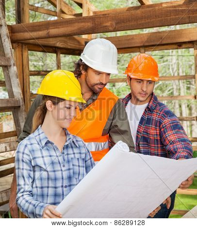 Male and female engineers examining blueprint in wooden cabin at site