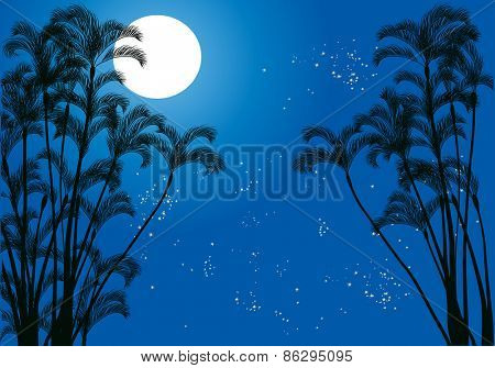 illustration with palm tree silhouettes under moon