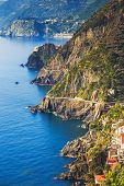 stock photo of amor  - Via dell Amore aerial view The Way of Love linking Manarola and Riomaggiore - JPG
