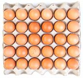 pic of egg whites  - Brown eggs and paper egg tray on white background - JPG