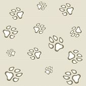 foto of dog tracks  - seamless texture eps10 vector dog step track - JPG