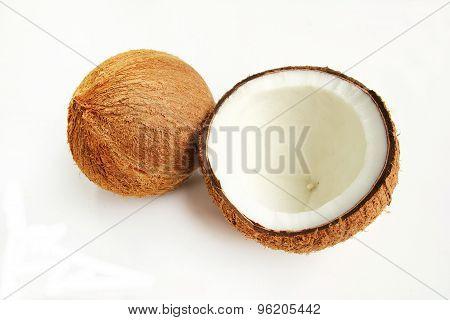 Coconut palm fruit