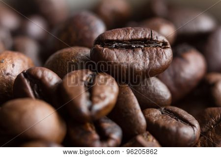 Macro Picture Of Coffee Bean