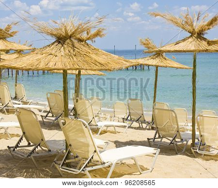 Exotic Beach Umbrellas