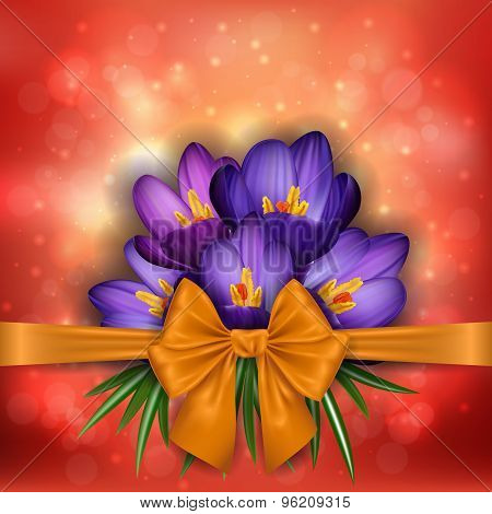 Purple Crocus Flowers With Golden Bow