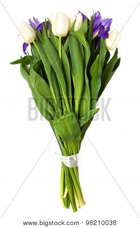 Spring Tulips And Iris Flowers.