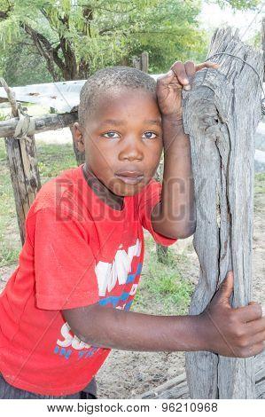 The Boy Portrait