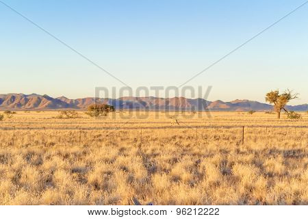 Sunset Landscape In Namibia